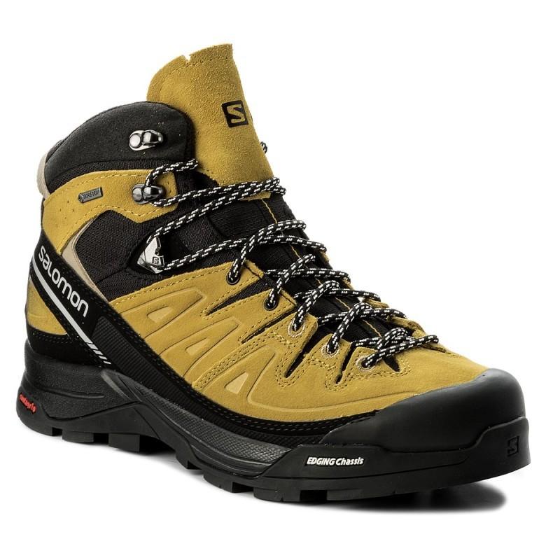 00b1b8dd8 Pánske topánky SALOMON X ALP MID LTR GTX 401653